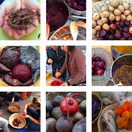 Harvest Dyeing Images
